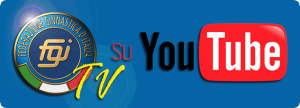 fgi_video
